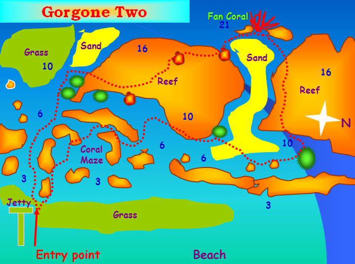 Gorgone Two
