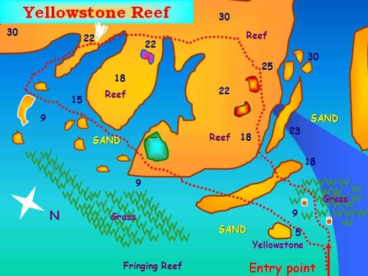yellowstone reef