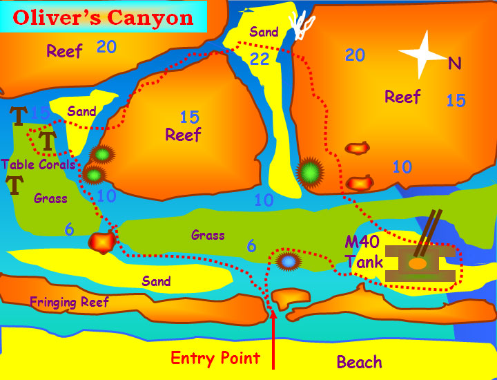 new canyon dive site map