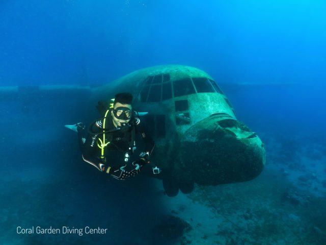 Hercules C130 front view, diving in aqaba red sea