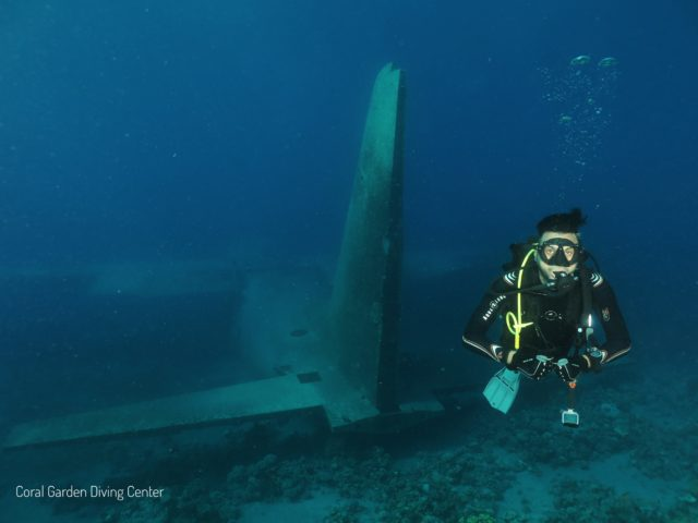 Hercules C130 wreak back view, diving in aqaba red sea
