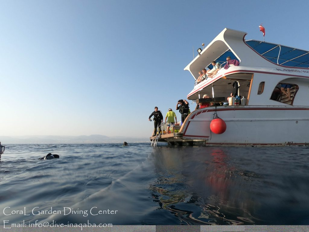 Boat Diver Course, boat trip red sea aqaba