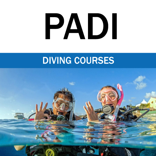 PADI diving courses Aqaba