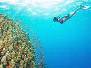 снорклинг в Акабе, Girl snorkeling to the reef