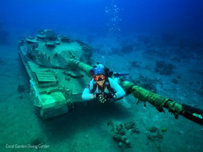 underwater museum tank, daily diving programs